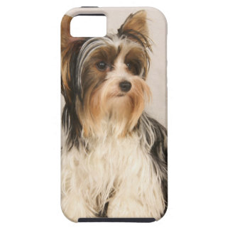 Portrait Yorkie Miss Mia Photo painting iPhone 5 Cases