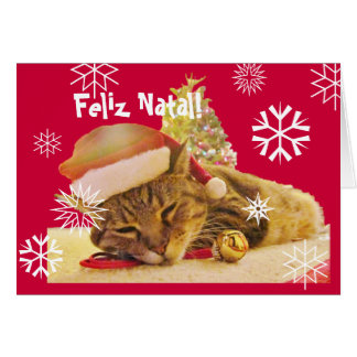 Portuguese: Christmas Kitty / Gatinho no Natal Card