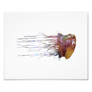 Portuguese man o' war photo print
