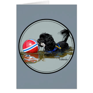 Portuguese Water Dog 2 with Buoy Ball Card