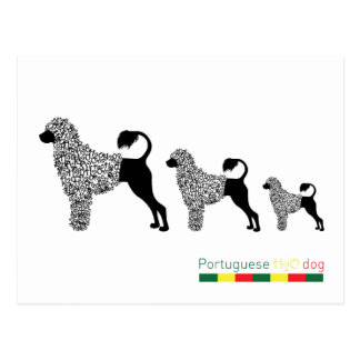 Portuguese Water Dog Card Post Cards