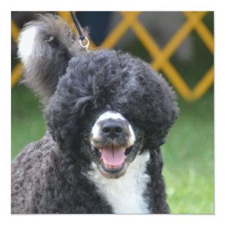 Portuguese Water Dog Custom Invitation