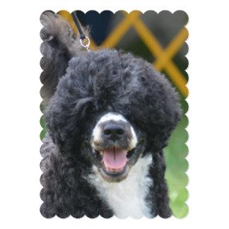 Portuguese Water Dog 5x7 Paper Invitation Card
