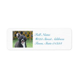 Portuguese Water Dog Return Address Label