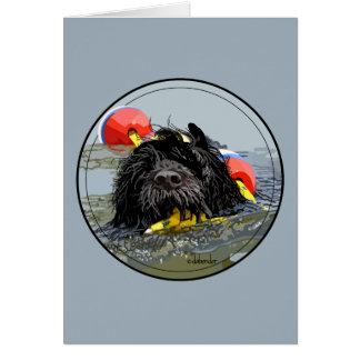 Portuguese Water Dog Swimming with Float Line Card
