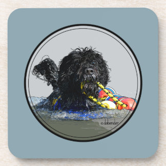 Portuguese Water Dog Swimming with Float Line Coaster