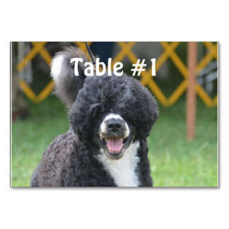 Portuguese Water Dog Table Card