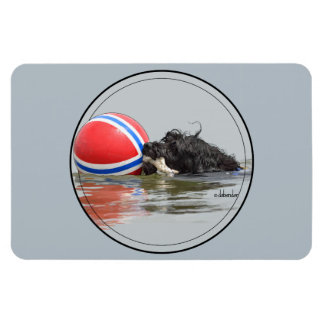 Portuguese Water Dog with Buoy Ball Magnet