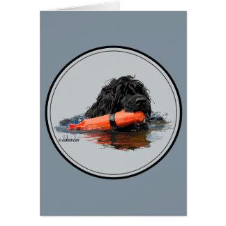 Portuguese Water Dog with Orange Bumper Card