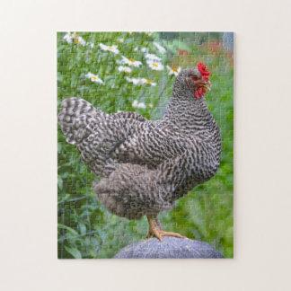 Posing Chicken Puzzle
