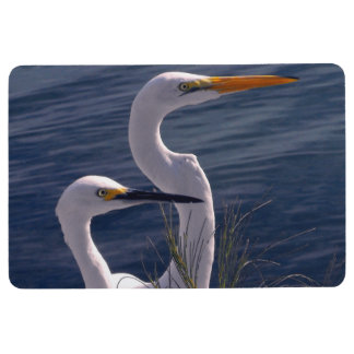 Posing Egrets Floor Mat