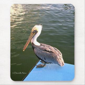 Posing Pelican Mousepad