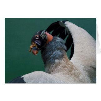 Posing Vulture Card