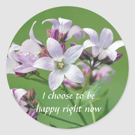 Positive Affirmation motivation about hapiness Classic Round Sticker