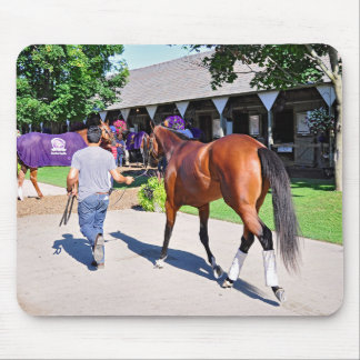 Positively Royal at Horse Haven Mouse Pad