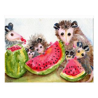 Possum Family Picnic Postcard