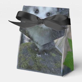 Possum Gift Box