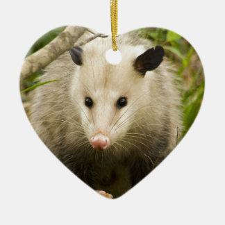 Possums are Pretty - Opossum Didelphimorphia Ceramic Heart Ornament