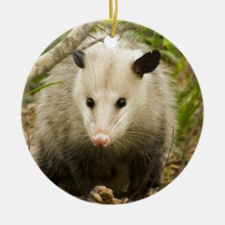 Possums are Pretty - Opossum Didelphimorphia Round Ceramic Ornament