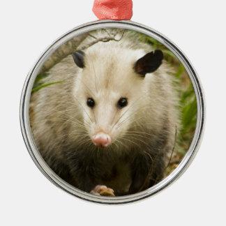 Possums are Pretty - Opossum Didelphimorphia Silver-Colored Round Ornament