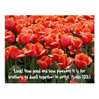 Post Card: Psalm 133:1 Postcard