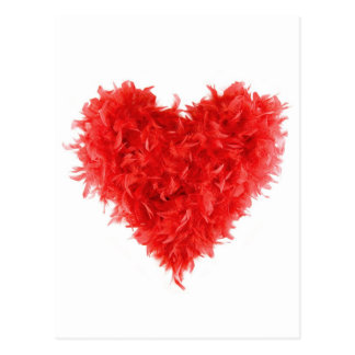 Post Cards  Red Heart Boa Postcard