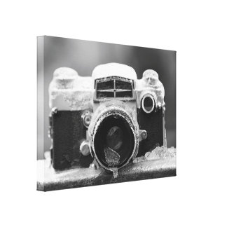 Post Ice Storm Vintage Black & White Camera Canvas Print