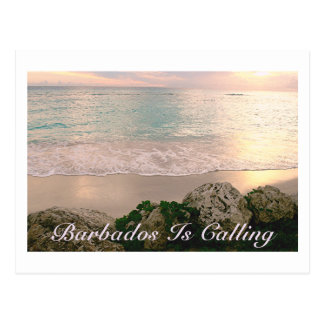 "POSTCARD/""BARBADOS IS CALLING""/SOFT MUTED COLORS POSTCARD"