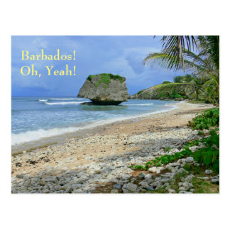 postcard, BARBADOS! OH, YEAH!/ BATHSHEBA ROCK Postcard