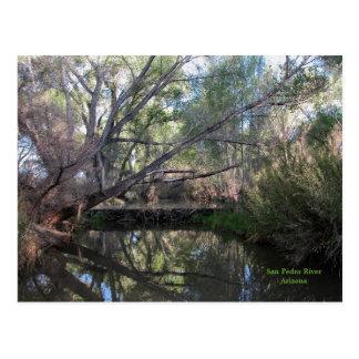 Postcard: Beaver Dam Postcard