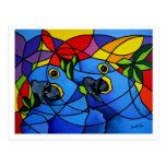 PostCard Blue Macaw - Cartão Postal Arara