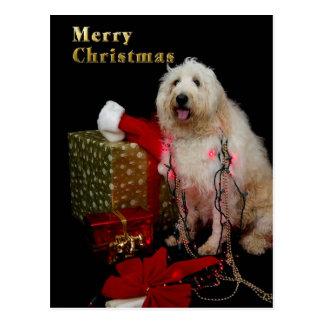 PostCard - Christmas Greeting - Doggy
