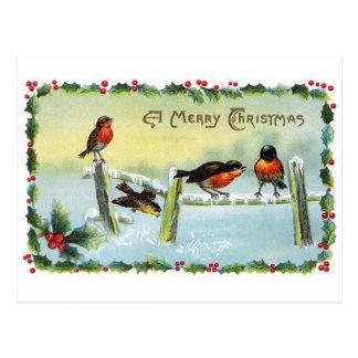 Postcard--Christmas robins sitting on a fence. Postcard