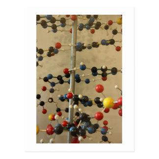 Postcard DNA model