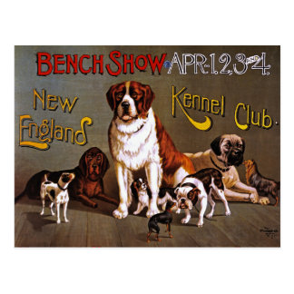 Postcard: Dog Show: Bench Show 1890 Postcard