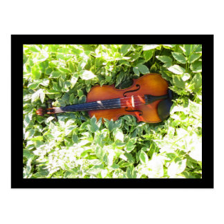 Postcard Fiddle and Ivy Violin post card
