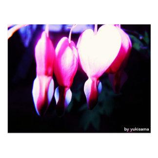 Postcard - flower hearts