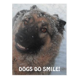 Postcard German Shepherd In The Snow Smiling