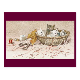 Postcard kittens in sewing basket