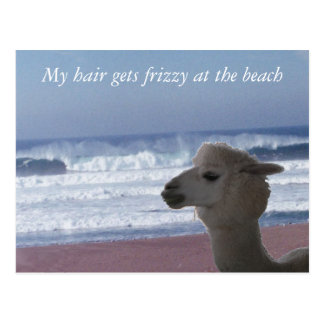 Postcard -  My hair gets frizzy ...