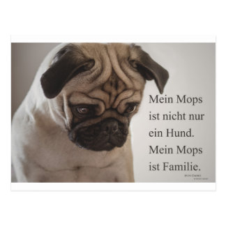 "Postcard ""my pug is not only a dog ......."