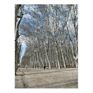 Postcard of the Parc of the Devesa de Girona