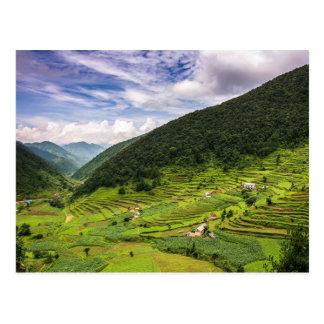 Postcard Paddy fields off Nepal