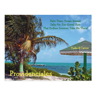 postcard, PROVIDENCIALES/PALM TREE & UMBRELLA/TURK Postcard