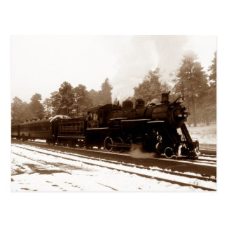 Postcard ~ RAILROAD TRAIN IN A PINEY WINTER SCENE