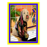 Postcard:  Soft Coated Wheaten Terrier At the Spa