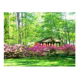 "postcard, ""Springtime At Toledo Botanical Garden"" Postcard"
