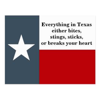 Postcard Texas Flag fun Bites Stings Sticks Saying