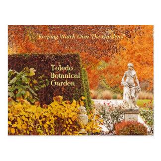 postcard, TOLEDO BOTANICAL GARDEN ABLAZE IN AUTUMN Postcard