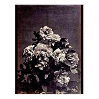 Postcard-Vintage Photography-Charles Aubry 26 Postcard